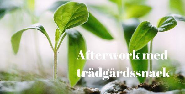 Afterwork med Trädgårdssnack! Odla hydroponiskt och i pallkrage